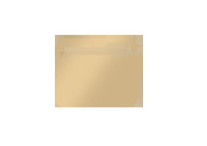 HBC icon2